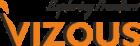 Vizous Color Logo